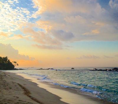 Sri Lanka South Coast Tour